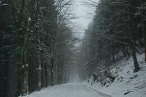 Do Orlických hor se vrátil sníh