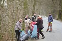 Lesu podél silnice mezi dvěma sousedními obcemi se po akci dobrovolníků velmi ulevilo