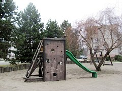 VZROSTLÉ BOROVICE z okraje dětského hřiště u obecního parku v Kvasinách nezmizí a budou stínit i nadále.