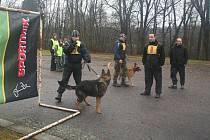 Obranářský závod psů si v Kostelci nad Orlicí odbyl svou premiéru
