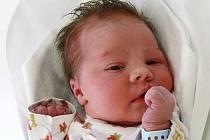 KRISTIAN: Rodiče Veronika Schenková a Marek Molnár z Rychnova nad Kněžnou se radují z narození syna Kristiána. Narodil se 7. 1. v 9.41 hodin (3,78 kg a 54 cm). Doma se na brášku těší Adrian.