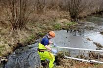 Vyprošťování uhynulého koně z vody a bahna v části nazývané Podhorná v Kostelci nad Orlicí.