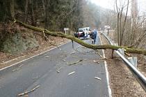 Strom nepoškodil jen auto, ale i svodidla