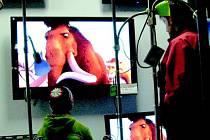 Doba ledová  na LCD  televizi nadchla při nákupech i nejmenší návštěvníky rychnovské prodejny.
