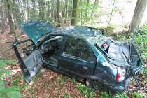 Řidič skončil v lese, narazil do stromu.