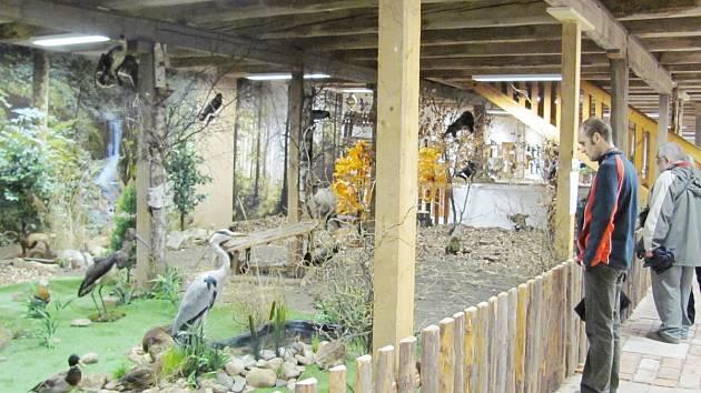 Přírodovědné muzeum v areálu doudlebského zámku viděli už první návštěvníci. Zaujal je velmi rybníček s ptactvem. Expozice se jim velmi líbila.