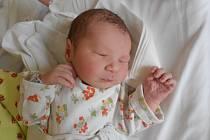 Ella Havlasová se narodila 10. dubna 2019 v 19.48 hodin s váhou 3 100 g a délkou 51 cm. Z miminka se těší rodiče Klára Tolarovičová a Miloš Havlas z Dobrušky. Tatínek podle maminky zvládl porod výborně.