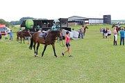 foto k Jezdecké závody v Čánce měly rekordní účast
