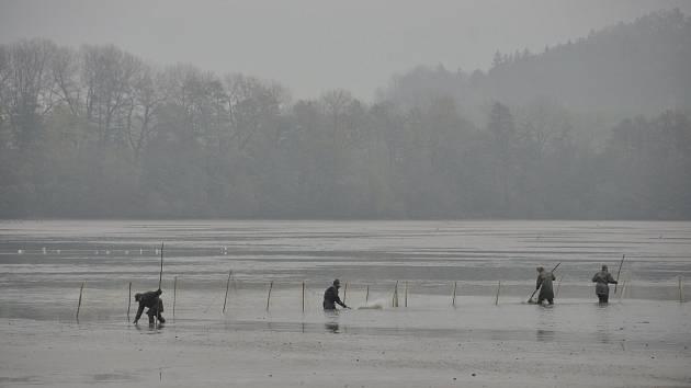 Již tradiční výlov rybníku Broumar v Opočně, který se koná každým rokem.
