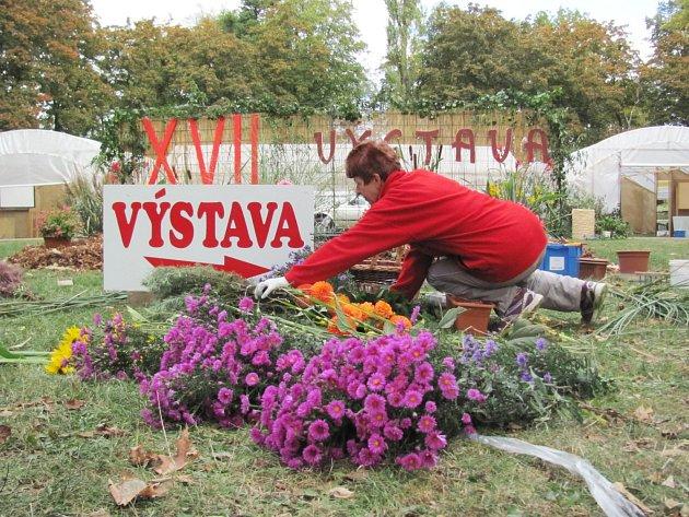 PŘÍPRAVY VÝSTAVY zahrádkářů v Častolovicích včera finišovaly. Aran-žérka květin připravuje výzdobu v centrální části areálu.