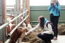 Studenti oboru Agropodnikání z Kostelce nad Orlicí čerpají zkušenosti v Rakousku