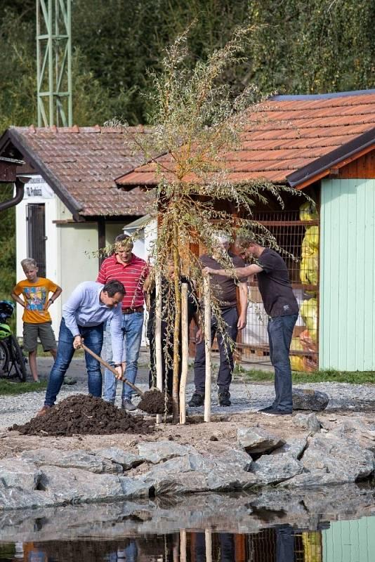 Sázení stromu naděje Podbřezí.