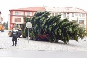 Vánoční strom v Dobrušce.