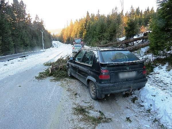 Padající stromy ohrozily na Rychnovsku řidiče