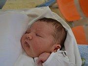 JAKUB ŠEFL  se narodil17. května ve 12:50 mamince Veronice Hostinské a tatínkovi Jakubovi Šeflovi z Hraštic. Chlapeček vážil 4300 gramů a měřil 54 cm. Tatínek byl u porodu prvního dítěte oporou.
