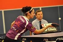 OPORA. Olesja Stachová (na snímku) podala v zápasech s Břeclaví a Hlukem kvalitní výkony, ale na výhry to nestačilo.
