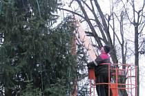 Strom na náměstí už není vánoční