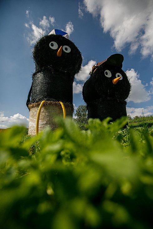 Kosáci převzali službu od Medvědů od Kolína
