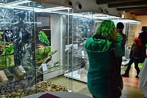 Rokytnické muzeum Sýpka se těší velkému zájmu návštěvníků.