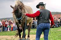 Western Vochtánka Potštejn byla v sobotu 25. dubna 2009 pořadatelem westernového dne na farmě Bolka Polívky v Olšanech u Brna.