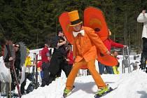 """V areálu ústeckého ski klubu v Říčkách se v sobotu uskutečnily jubilejní 50. Bafuňářské závody. Na trati """"obřáku na krásu"""" se objevily desítky různých masek."""