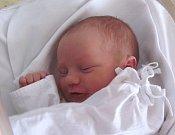 NATÁLIE NOVOTNÁ se narodila manželům Soně a Tomášovi Novotným z Vamberka. Na svět se poprvé podívala 19. 1. ve 12.01 hodin s váhou 3,29 kg a délkou 48 cm. Doma se na sestřičku těšil Davídek.