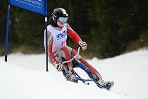 DOBRUŠSKÁ SKIBOBISTKA Stanislava Preclíková získala na MČR v Deštném v O. h. zlaté medaile ve slalomu a v obřím slalomu.