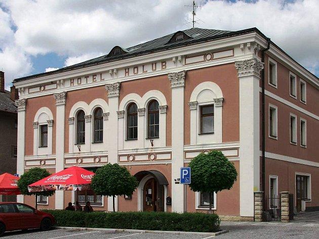 Hotel Holub