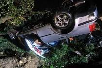 Noční jízda opilého řidiče skončila v jabloni