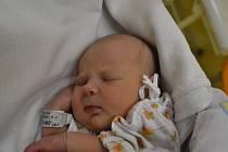 VERONIKA ZANGEOVÁ svým příchodem na svět potěšila maminku Barboru Kárníkovou a tatínka Davida Zangeho z Dobrušky. Holčička se narodila 29. listopadu v 9:15 s váhou 3120 gramů a délkou 46 cm. Tatínek byl u porodu a byl dle slov maminky úžasný.