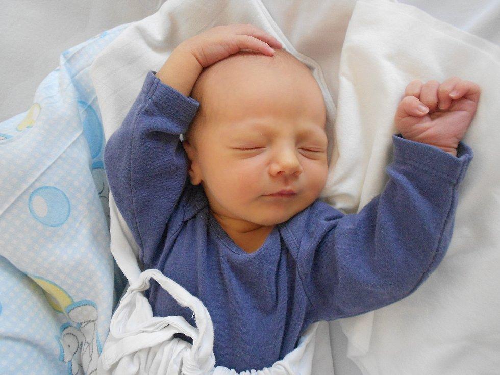 SEBASTIAN ZÁPLATA přišel na svět 28. května ve 21.08 hodin. Měřil 51 cm a vážil 3300 g. Velikou radost udělal svým rodičům Barboře Čápové a Ladislavu Záplatovi z Dlouhoňovic. U porodu to tatínek zvládl skvěle.