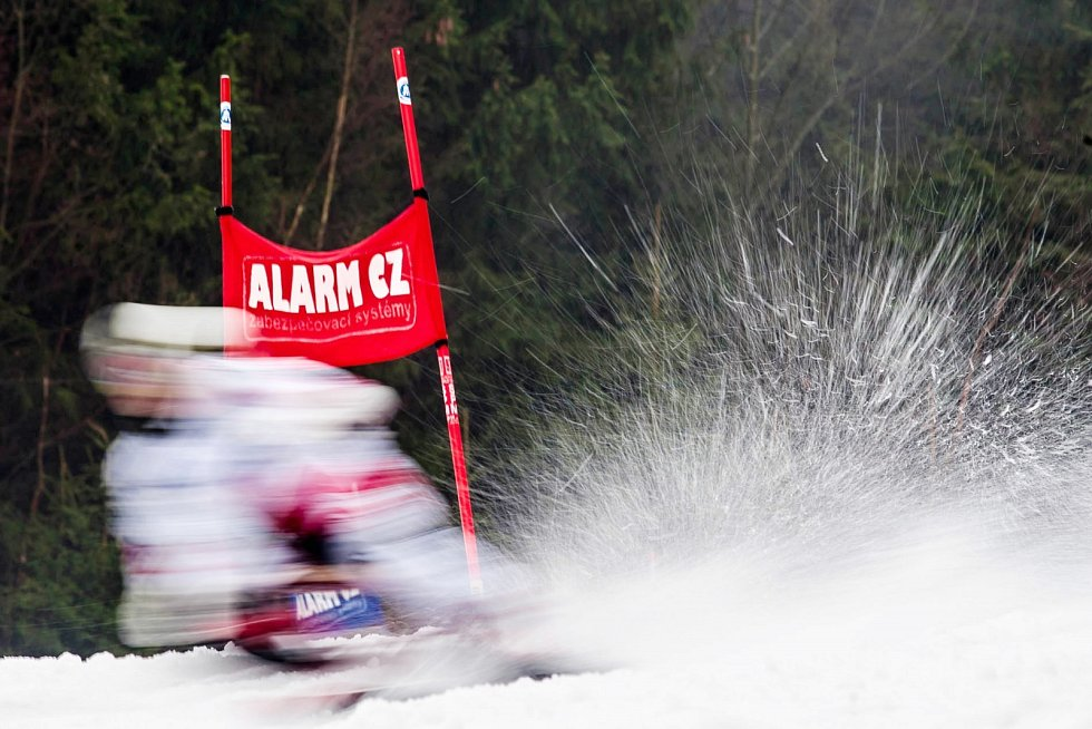 Z mistrovství světa v jízdě na skibobech 2016 v Deštném v Orlických horách.