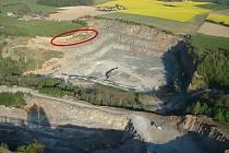 Lom v Mastech ukrýval křídové fosilie.