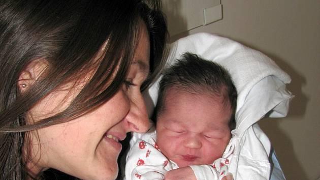 Helena a Petr Likavcovi z Nového Města n. Metují přivítali do rodiny  třetí dcerku. Stela se narodila 17. září  2008 ve 22.38 hodin (3,58 kg, 51 cm).