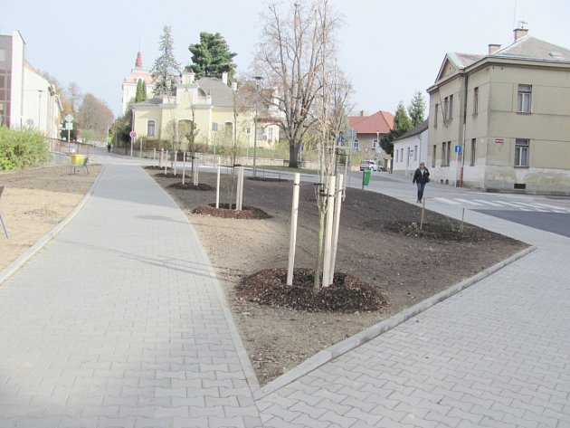 Výsadba zeleně na Školním náměstí.