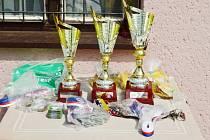 Na hřišti v Doudlebách nad Orlicí se střetly týmy žáků 1. stupně základních škol. Vítězství a postup do krajského finále slaví ZŠ Opočno