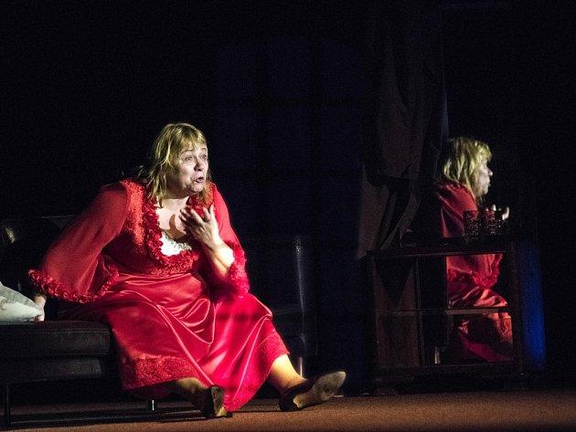 Z divadelního festivali Poláčkovo léto v Rychnově nad Kněžnou.