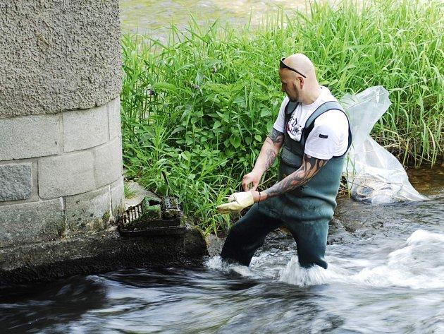 Takto se uklízela řeka Orlice v Kostelci, odpadky jsou tam ale zase znovu.