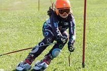 Závodnice z Českého Meziříčí Eliška Rejchrtová v plné rychlosti projíždí slalomovou branku.
