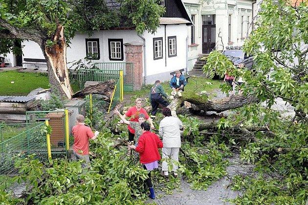 Spadlý strom v Černíkovicích během letní bouřky ve čtvrtek 23. čerevence.