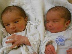 LYNDA ABIGAIL a LAYLA RACHEL BAJUSZOVÁ  se narodily 29. prosince v 16:23 – 16:30 mamince Lindě Totnové a tatínkovi Jozefu Bajuszovi z Rychnova nad Kněžnou. Holčičky vážily 2760 gramů a 3030 gramů. Měřily 47 cm a 48 cm. Tatínek zvládl porod skvěle.