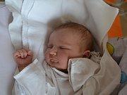 MARIE JEŽKOVÁ se narodila 5. června v 0:22 rodičům z Nového Hrádku. Holčička vážila 3570 gramů a měřila 50 cm. Doma se na mladší sestřičku těšila starší Alžběta.