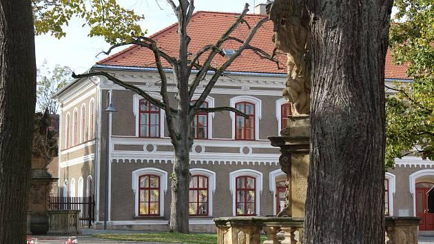 Seschlá lípa srdčitá u základní školy na Trčkově náměstí v Opočně. Foto: Deník/Jana Kotalová