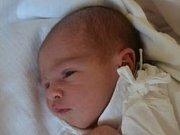 DANIELA HOJNÁ se narodila 16. července ve 23:38 manželům Kateřině a Ondřejovi Hojným z Dobrušky. Holčička vážila 2850 gramů a měřila 49 cm. Tatínek porod zvládl výborně. Doma se na sestřičku těšili bráškové David, Matěj a Filip.