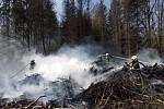 Požár poničil les.