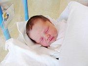 JOSEF MARTINEC: Rodiče Veronika Dušková a Josef Martinec z Opočna přivedli na svět syna. Světlo světa poprvé spatřil 28. prosince v 11.40 hodin s váhou 4,18 kg a délkou 52 cm. Doma se na brášku těšila Natálka. Tatínek to u porodu zvládal na jedničku.