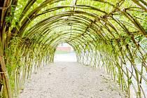 Z vrbiček staví Jiří Rech tajemné tunely, oblouky, labyrinty....