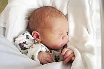 PETR: Rodiče Lenka a Michal Kubcovi z Kvasin se radují z narození syna Petra. Narodil se 21. 9. v 6.18 hodin (3,24 kg a 42 cm). Tatínek byl u porodu a zvládl to úžasně i pupeční šňůru přestřihl. Doma se na brášku těší Kačenka.