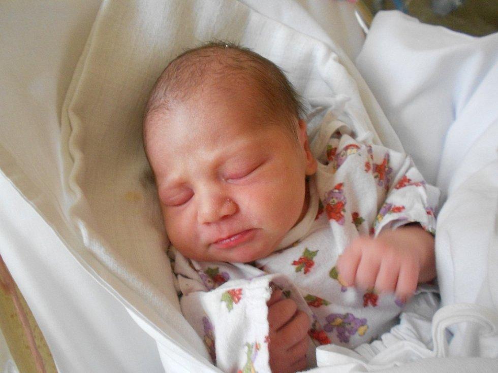 Karolína Longauerová přišla na svět 19. prosince 2018 mamince Marii Kovářové a tatínkovi Ladislavu Longauerovi z Čermné nad Orlicí.