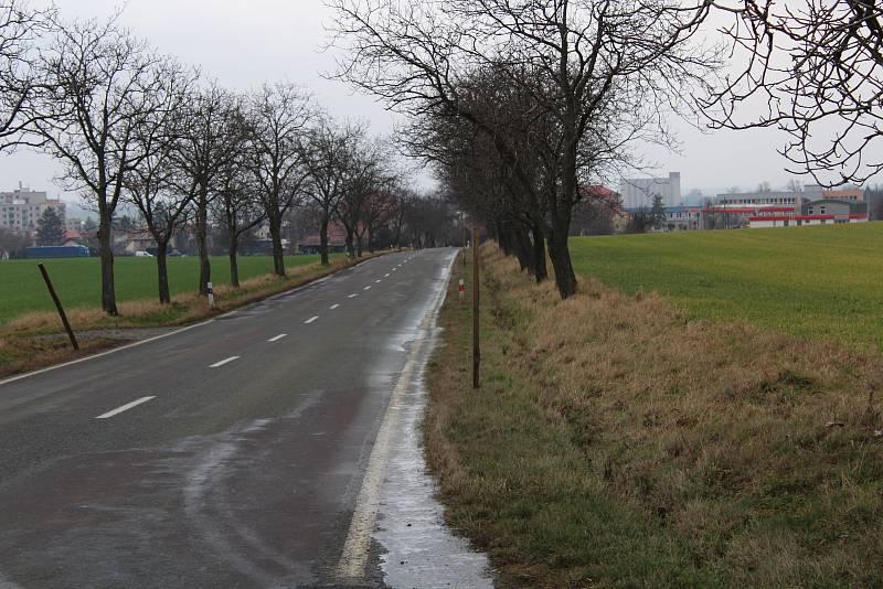 Cesta od obce Provoz k Dobrušce.